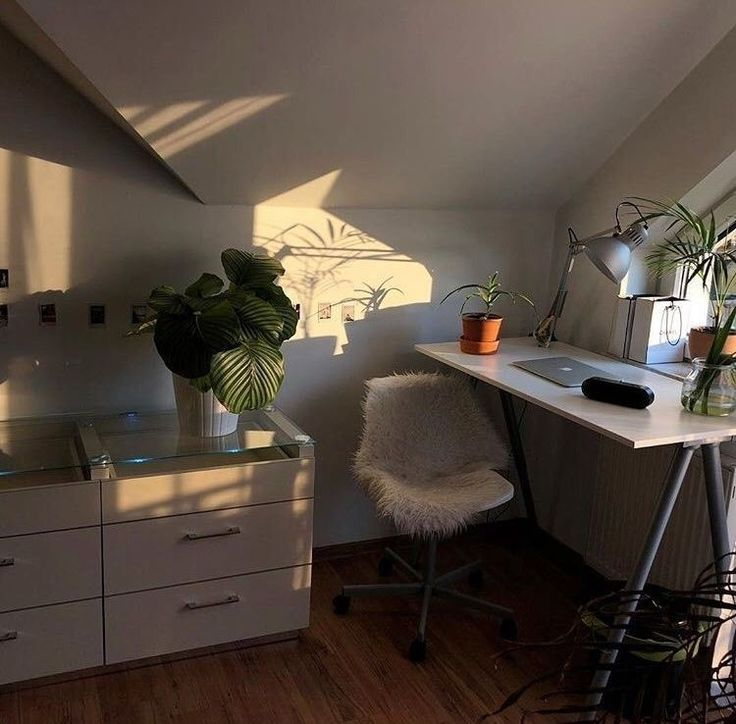 Tumblr Aesthetic Home Office Ideas, Natural Sunlight And