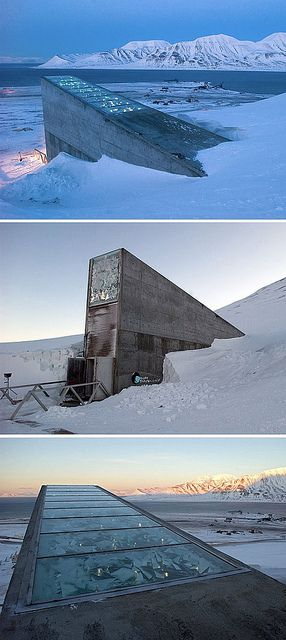 The Global Seed Vault is designed to store and protect samples of every type of seed from every seed collection in the world. Descending almost 500 feet under the permafrost, the entrance tunnel to the seed vault is designed to withstand bomb blasts and earthquakes. See photographs of the interior here. via NY Times