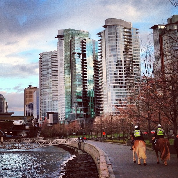 Cool to see the Vancouver Police riding their horses on the Coal Harbour seawall - Photo by iggrafo