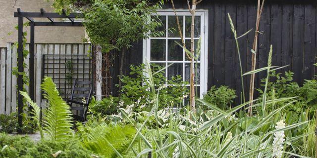 JEG SAMLER PÅ PERGOLAER (via Bloglovin.com )