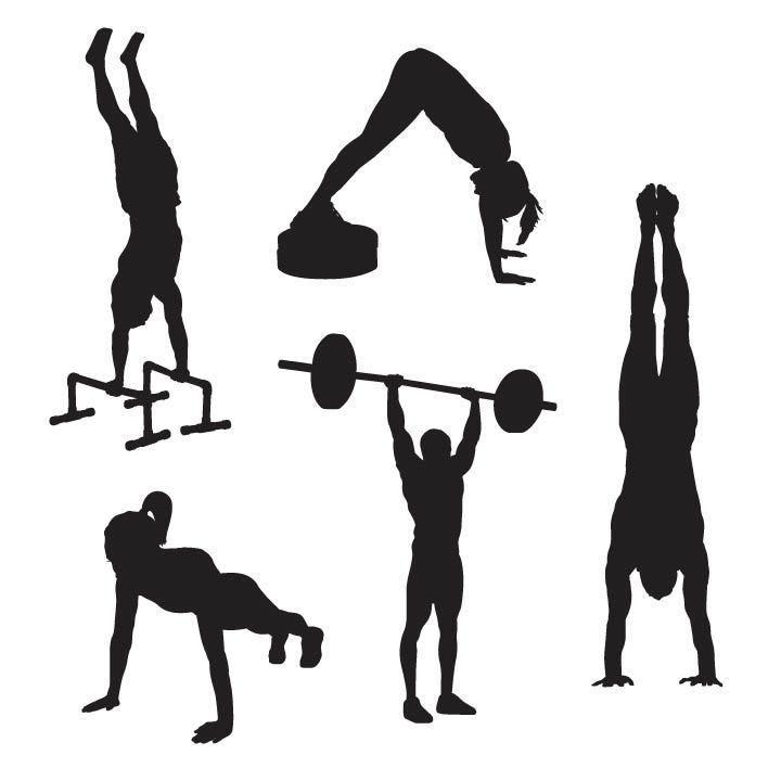 best 25  trx workout pdf ideas on pinterest