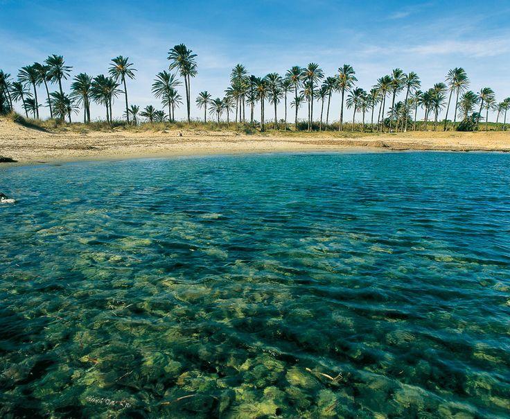 Torrevieja, playa de Ferrís.