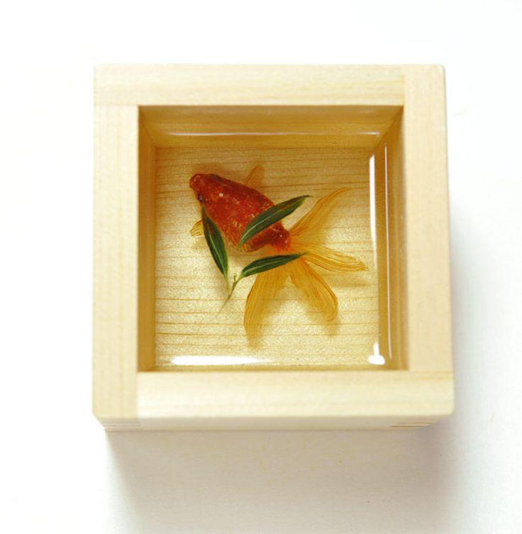 """アクリル+金魚ー深堀 隆介氏  """"Goldfish Salvation"""" Riusuke Fukahori  http://goldfishing.info/"""