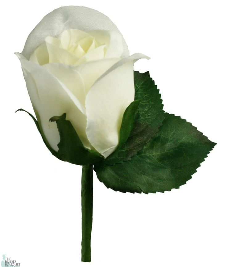 Ivory Silk Rose Boutonniere - Groom Boutonniere Prom - TheBridesBouquet.com