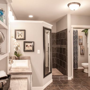 Walk In Shower Design Ideas, Pictures, Remodel and Decor