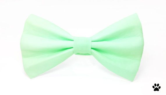 Mint green bow tie for cats and dogs from RHC Pets!