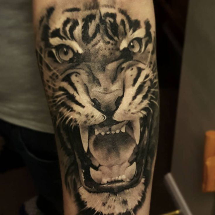 1000+ Ideas About Tiger Tattoo On Pinterest