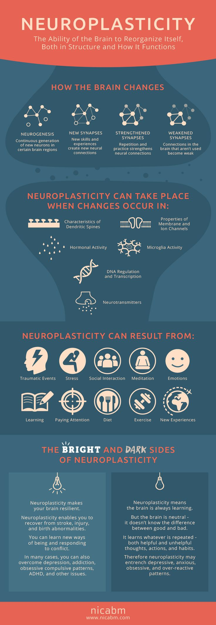 Neuroplasticity is the ability on how the brain reorganizes itself to heal. Both on structure and function.