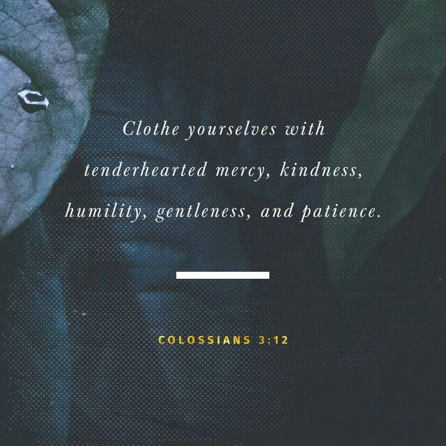 Put on therefore, as the elect of God, holy and beloved, bowels of mercies, kindness, humbleness of mind, meekness, longsuffering; Colossians 3:12 KJV http://bible.com/1/col.3.12.KJV