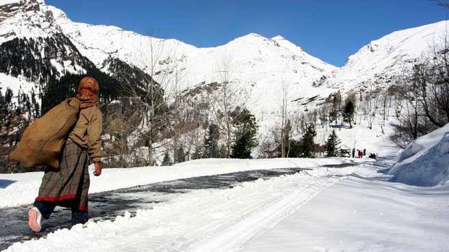 travel agent shimla himachal | best travel agent Himachal | travl service  shimla