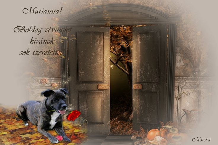 Marianna 11 01