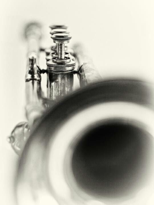 A trumpet can let you be bigger than you'll ever be alone.