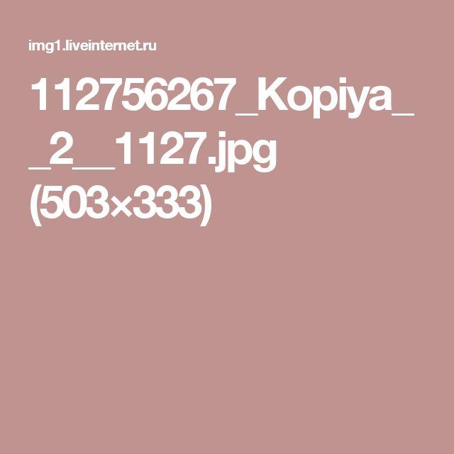 112756267_Kopiya__2__1127.jpg (503×333)