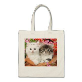 One of the cutest kitty bags that i had yet seen to date.