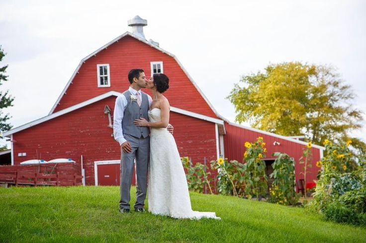 Buffalo mn barn wedding