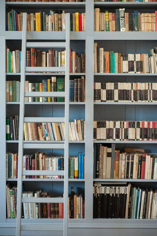 A world full of books #library #books #grayfurniture #guesthouselibrary @Cincsor.Transylvania.Guesthouses