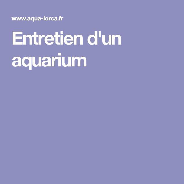 Entretien d'un aquarium