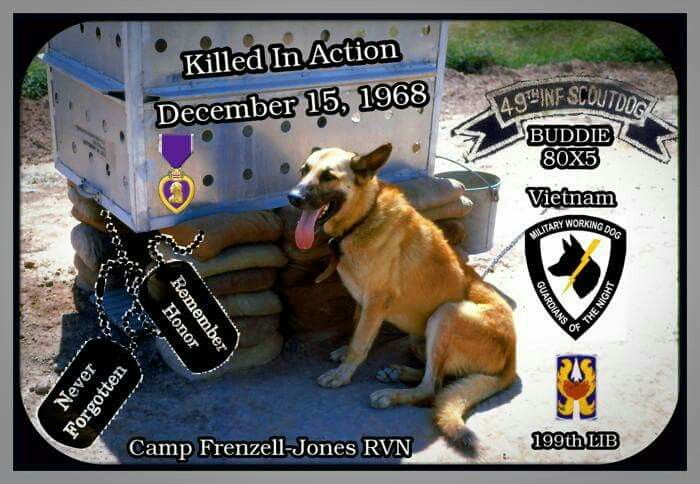 Killed in Action