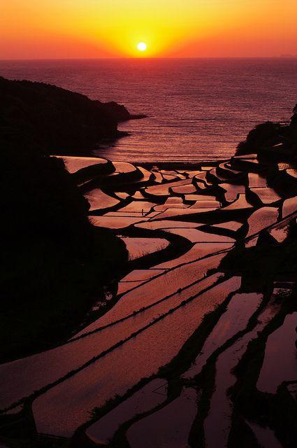 Terraced paddy fields in Saga, Japan