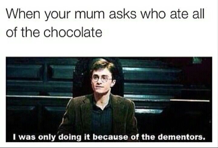 Who ate all the chocolate? Harry Potter humor