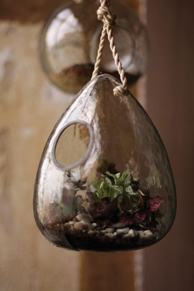 Recycled glass tier drop terrarium