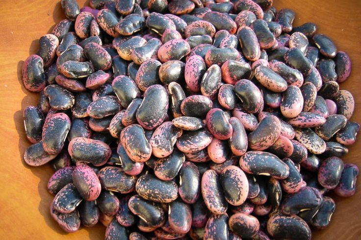 Try a simple side salad with Rancho Gordo's Dried Heirloom Scarlet Runner Beans