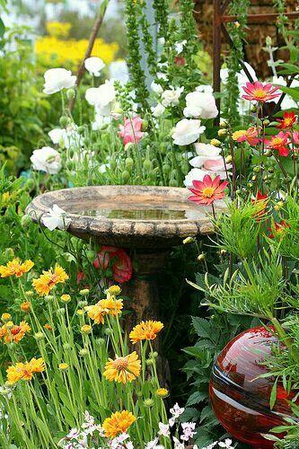Attractive Beautiful Birdbath Surrounded By Flowers.   My Cottage Garden