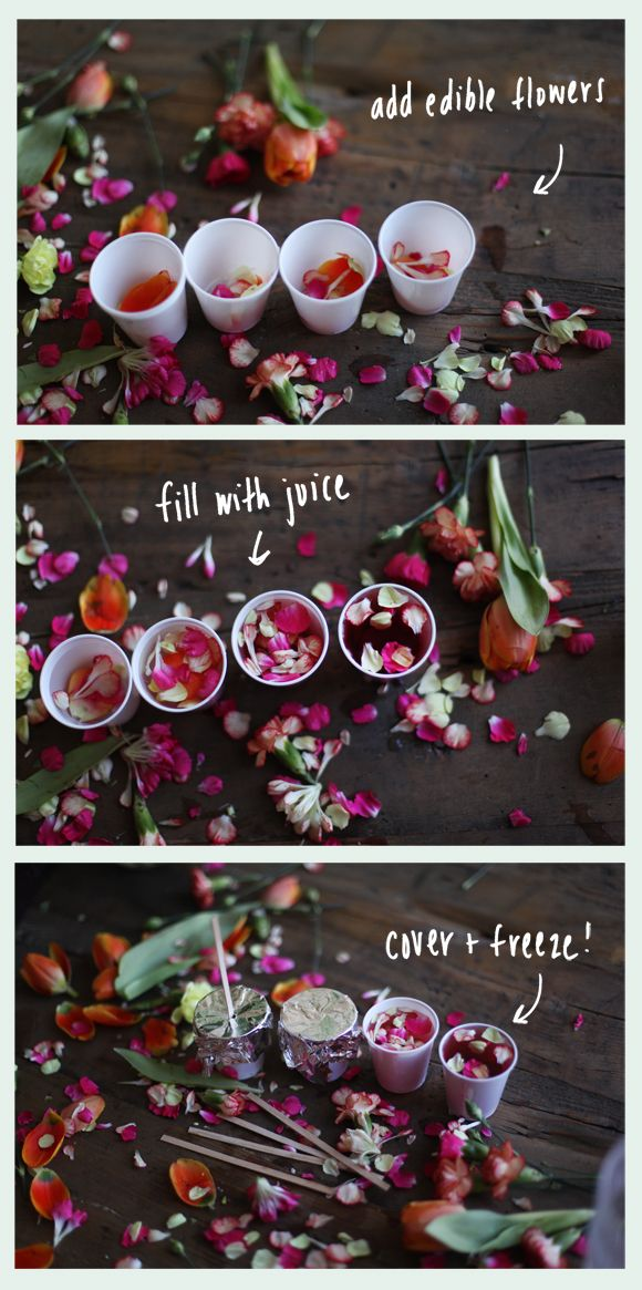 How To Make Edible Flower Ice Pops   Free People Blog// I wonder how good they taste... :)