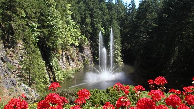 nature-Butchart-Gardens-is-a-garden-flower-tourism,-colombia