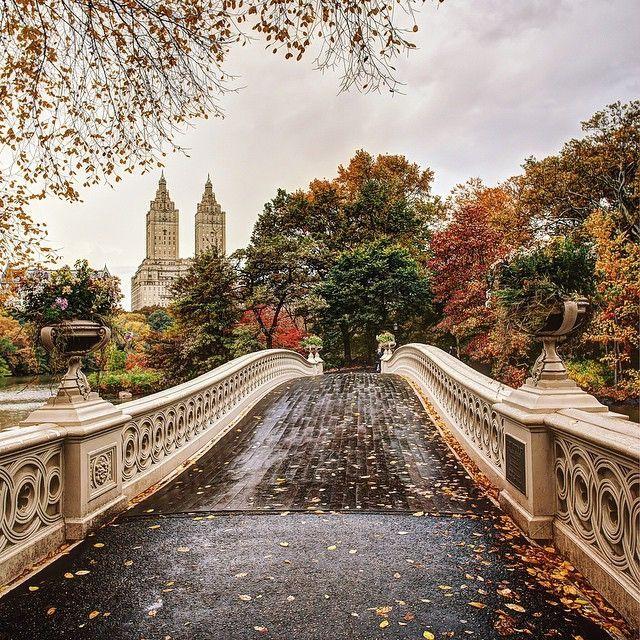 Bow Bridge, Central Park by godsavethegold #nyc