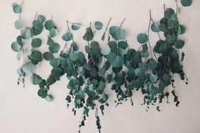 こちらはユーカリで作ったガーランド。丸い葉っぱの種類で作ると可愛らしさアップ★白い壁に映えるグリーンでナチュラルなお部屋に。