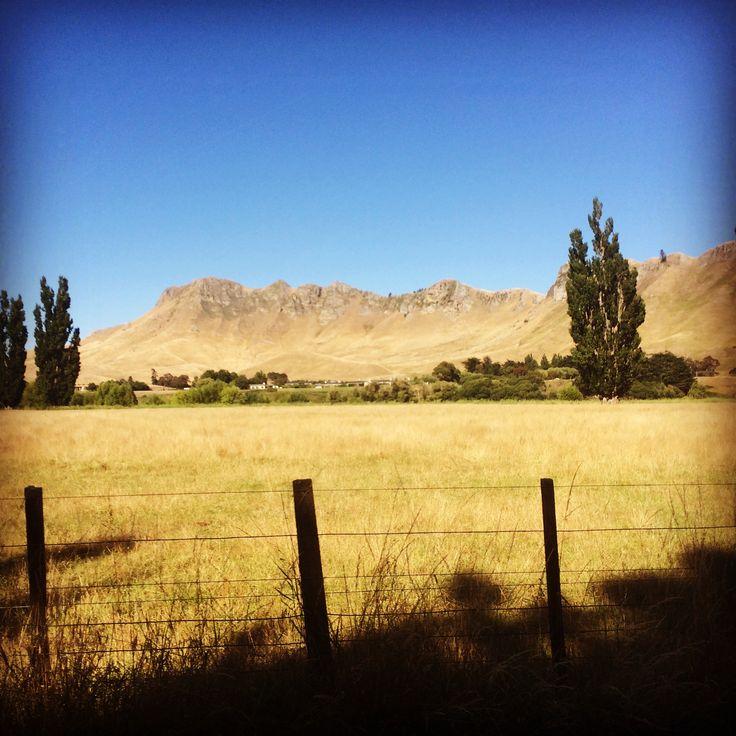 Summer on Tukituki - view of Te Mata