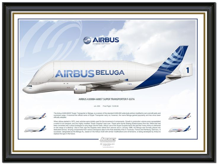 Airbus Beluga  For custom print work, email: andy@aircraftillustrations.com #aircraftillustrations ‪#‎Airbus‬ Andy McKay © 2015