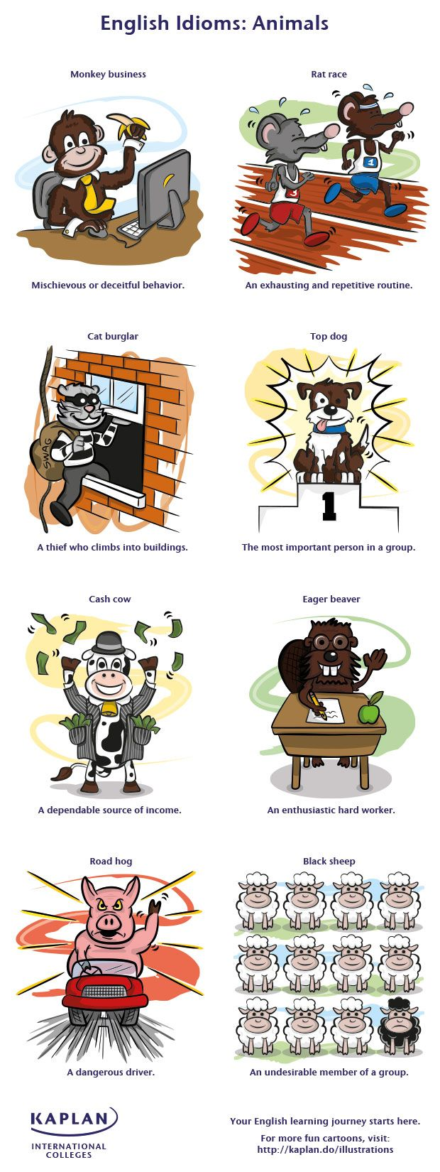 """English Idioms: Animals"" (#INFOGRAPHIC)"