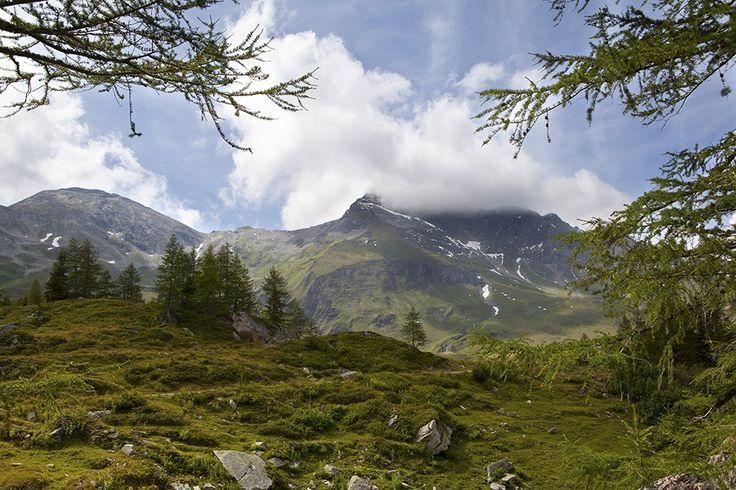 Fotobehang: Alpenlandschap