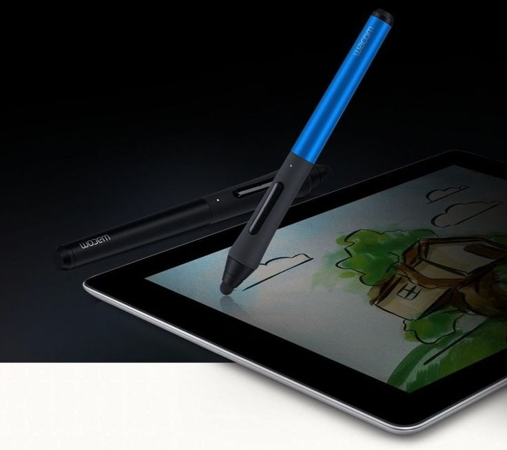 Wacom Intuos Creative Stylus with iPad