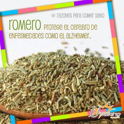 Agrega #Romero a tu dieta y previene el #Alzheimer