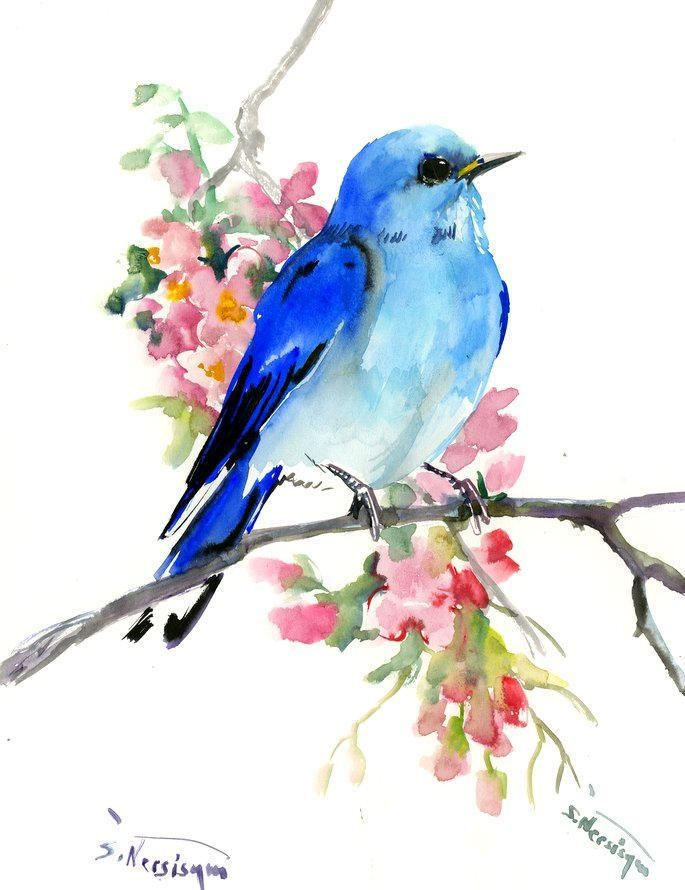 Mountain Bluebird And Sprin Blossom, birds and flowers, violet blue painting, blue room art by ORIGINALONLY on Etsy