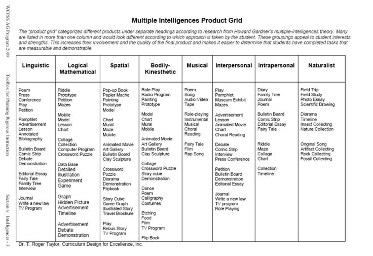 Multiple Intelligences Product Grid