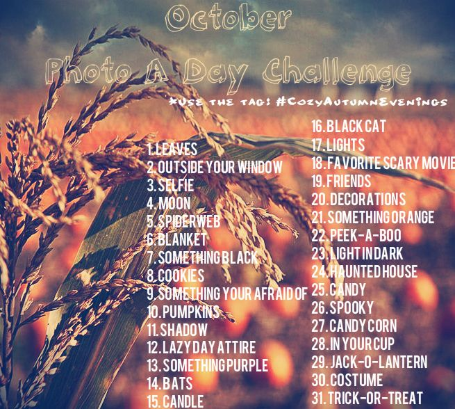 Heres Octobers Photo a Day Challenge!