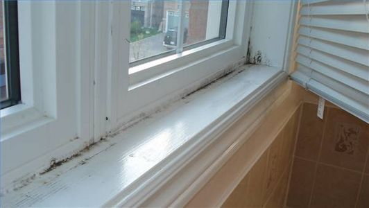 how to get rid of mold in window sills