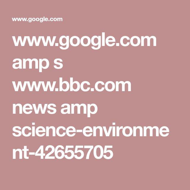 www.google.com amp s www.bbc.com news amp science-environment-42655705