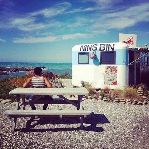 One of the best spots on the east coast NZ~ nin's bin, Kaikoura