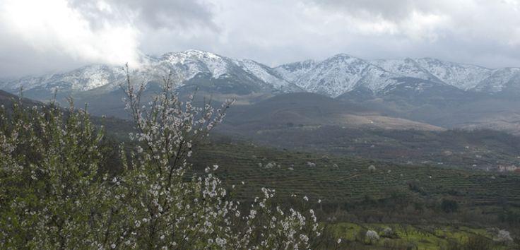 El Valle del Ambroz - http://www.absolutbadajoz.com/el-valle-del-ambroz/