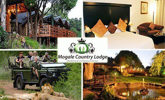 Experience the Ultimate Bush Escape at Mogale Country Lodge | Daddy's Deals