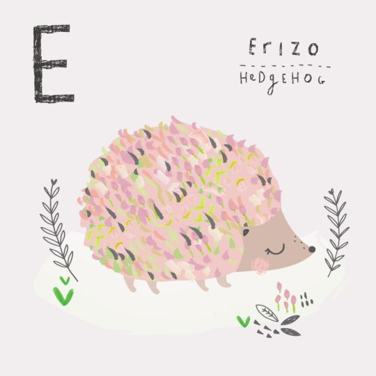 Here is E in my Spanish alphabet! I recently saw a hedgehog in my parents garden and I'd forgotten how cute they are!
