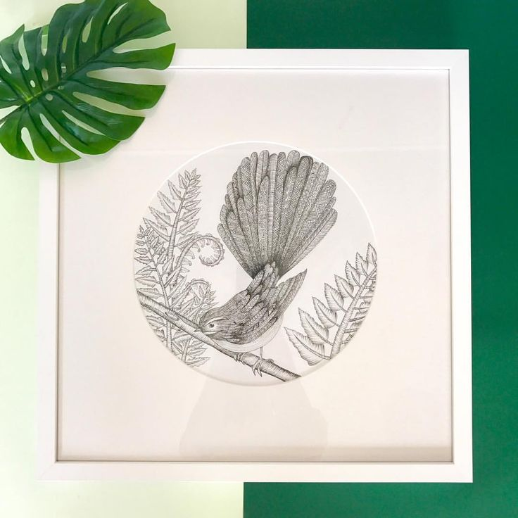 """98 Likes, 2 Comments - chelsea-Mae Art (@cmae.art) on Instagram: """"YAY FOR FRAMED ORIGINALS!  I've been meaning to get the three NZ native birds framed for so long…"""""""