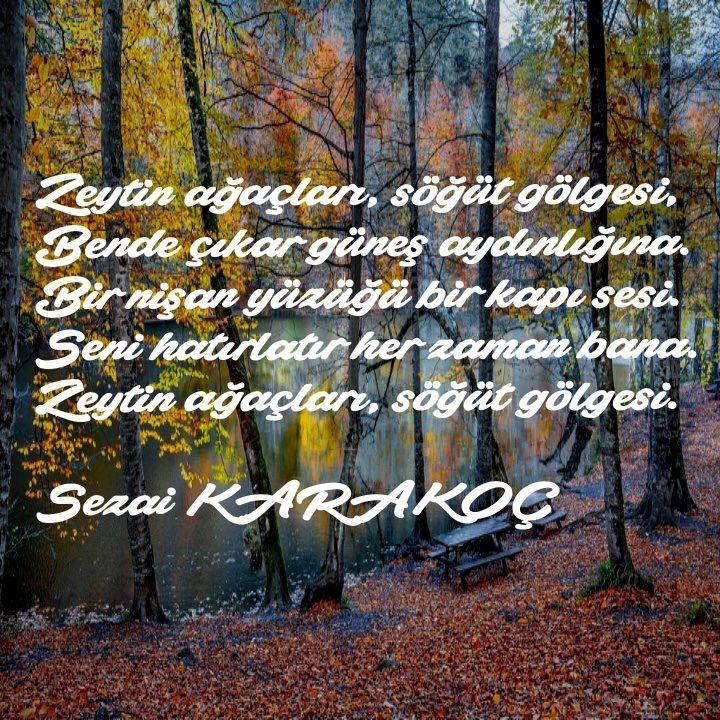 Zeytin ağaçları, söğüt gölgesi, Bende çıkar güneş aydınlığına. Bir nişan yüzüğü bir kapı sesi.  Seni hatırlatır her zaman bana. Zeytin ağaçları, söğüt gölgesi. - Sezai Karakoç / Monna Rosa #sözler #anlamlısözler #güzelsözler #manalısözler #özlüsözler #alıntı #alıntılar #alıntıdır #alıntısözler #şiir #edebiyat