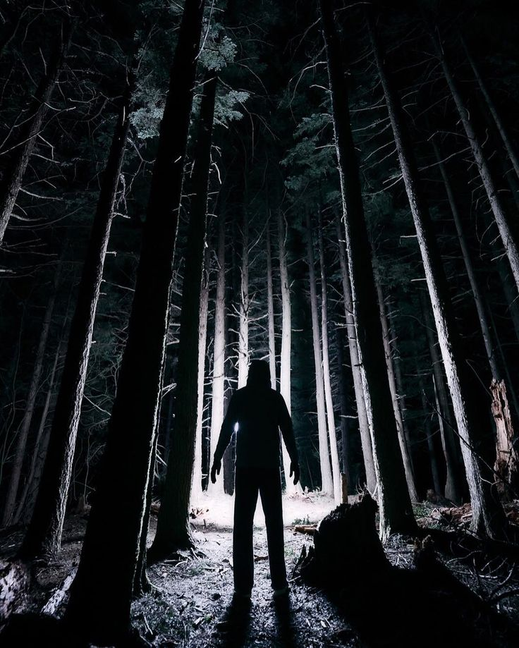"""""""The Creature""""  Walk towards the light... @jonmill01 doing his best to look as creepy as possible in the woods on Rattlesnake Ledge.  #wa #washington #night #nighttime #nightscape #creepy #slenderman #aliens #spooky #woods #forest #shadows #creature #monster #horror #pnw #pacificnorthwest #pnwcollective #hiking #hike #pugetsound #snoqualmie #northbend #nature"""