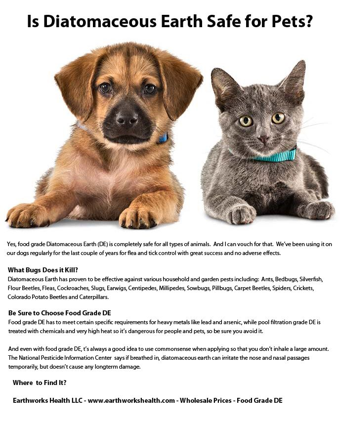 Is Diatomaceous Earth Safe for Pets? We offer Food Grade